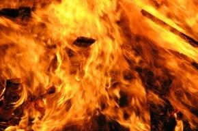 Пожарные тушили квартиру на улице Стойкости