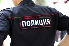 Пенсионер на Skoda в Ломоносове столкнул полицейский Ford с дороги