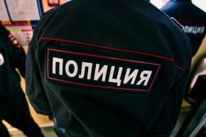 Мигранта в Петербурге заподозрили в изнасиловании сестры