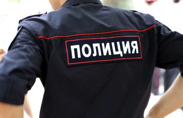 Школьница в Петербурге пострадала в ДТП с полицейской машиной