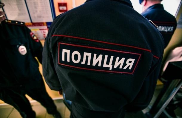 Полиция нашла мать оставленного в Пулковском парке мальчика