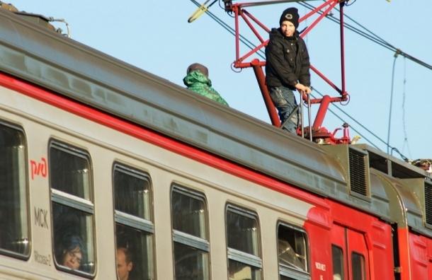 ВПетербурге детям запретят гулять покладбищам изаходить вкальянные