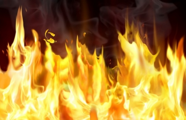 Машина в саду Красного Села сгорела дотла