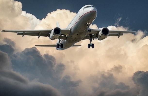 Законопроект о черном списке авиадебоширов разработали в Госдуме
