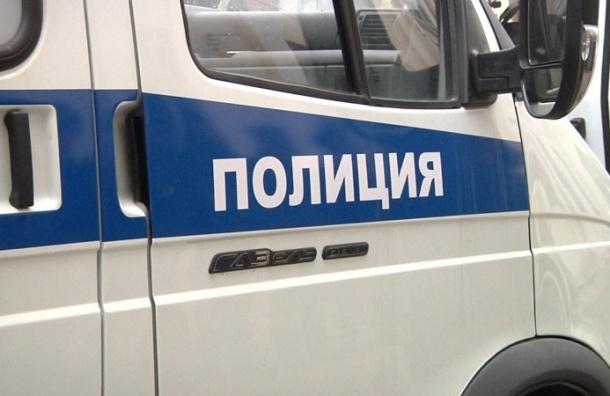 Мужчина с украинского телефона «заминировал» Смольный, суд и прокуратуру