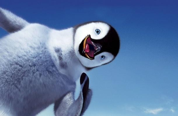 Ученые 22 года выясняли, что едят пингвины