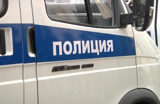 Молодую петербурженку силой увезли на угнанной «газели»