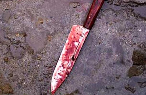 ВПушкине пенсионер избил женщину молотком ипопытался покончить ссобой