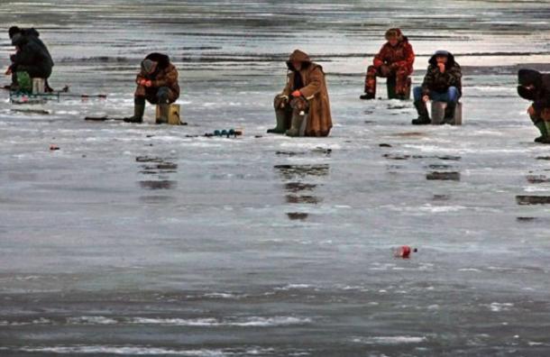 Двенадцать рыбаков сняли со льдины в Финском заливе