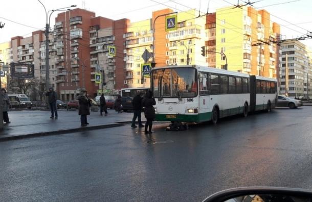 Пешеход в Петербурге перебегала дорогу на красный и врезалась в автобус