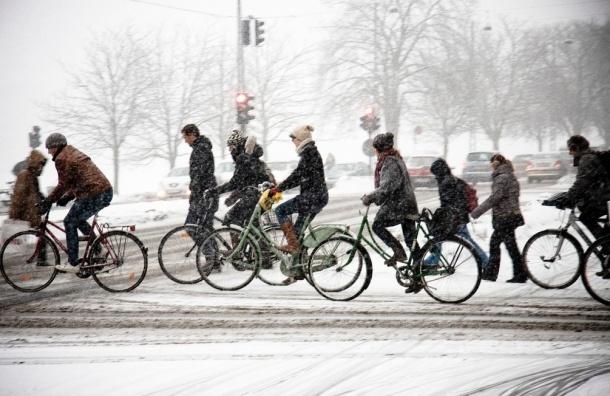 Петербуржцам в пятницу предлагают поехать на работу на велосипеде