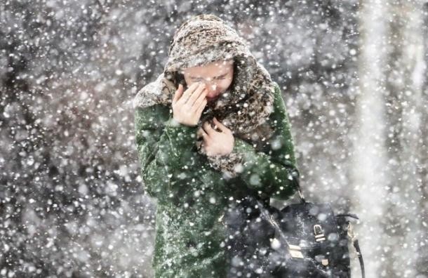Вначале рабочей недели вПетербурге потеплеет до