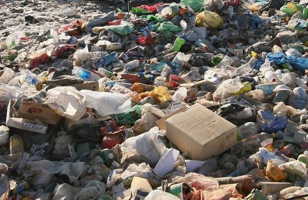 Прокуратура: в Петербурге нет возможности перерабатывать мусор