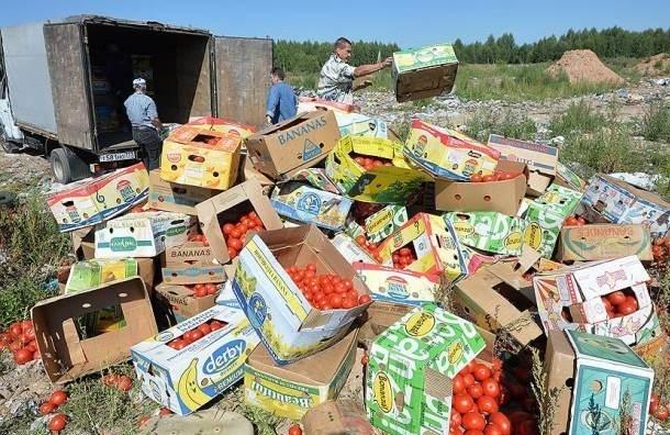 Минкульт предлагает отмечать День патриотизма в годовщину введения продуктового эмбарго