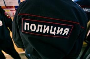 Педофил в Петербурге надругался над 7-летней девочкой