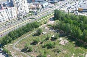 Часть сквера на Савушкина, 112 выставили на торги под застройку