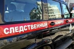 Школьника убили на улице в Пензенской области