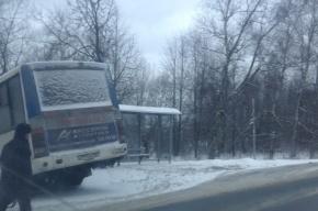 Пассажиры маршрутки в Металлострое вышли не на остановке, а в кювете