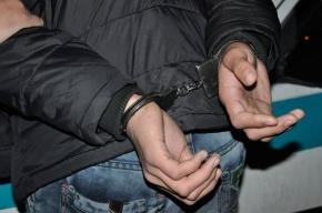Мальчика изнасиловали на проспекте Просвещения