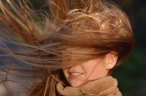 Штормовые ветра возвращаются в Петербург