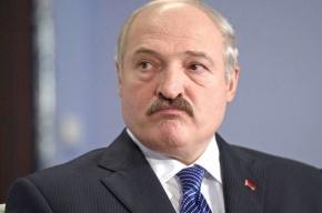 Белорус-убийца пойман в Веселом Поселке
