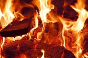 Полиция заинтересовалась сгоревшими грузовиками на Шкиперском