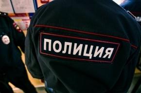 «Офисная работница» оставила магазин нижнего белья наПулковском без выручки