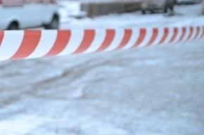 Труп изнасилованного и жестоко убитого мужчины нашли под Колпино