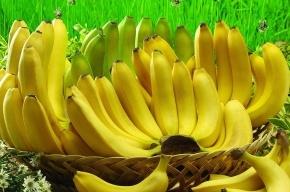 Грузовик с бананами пропал по пути из Петербурга в Московскую область