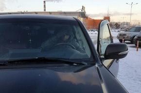 Менеджер магазина на Пулковском не дал украсть черный Lexus