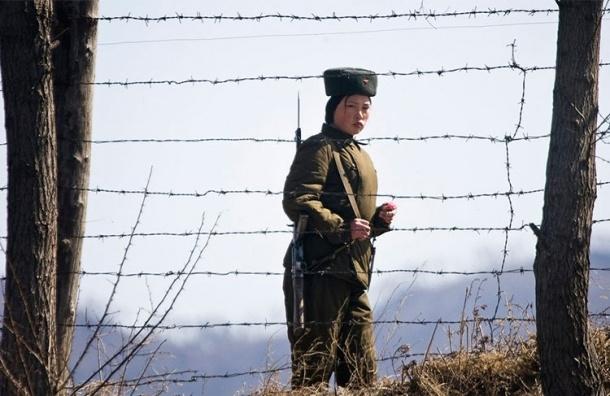 Сбежавшего из КНДР мигранта оставили в Петербурге