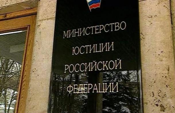 Правительство поручило Минюсту подготовить поправки в «статью Дадина»