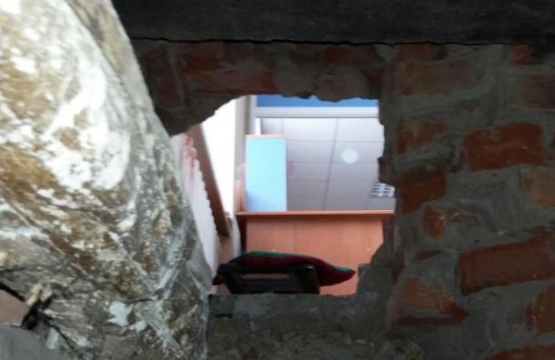 Миниатюрный грабитель проник в салон связи на Коломяжском через отверстие в стене
