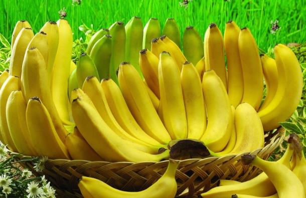 «Закладку» с наркотиком на 150 млн рублей нашли под бананами в порту Петербурга