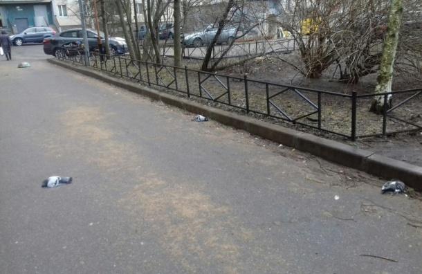 ВПриморском районе живодеры потравили голубей