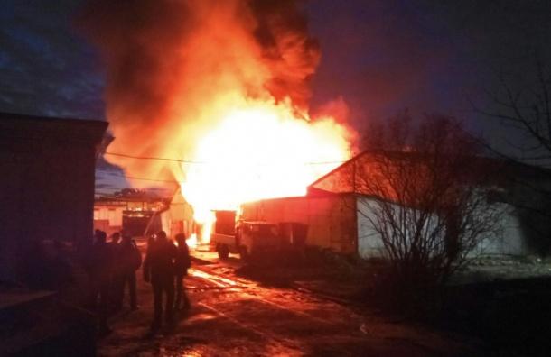 Сильный пожар произошел назаводе вКолпино