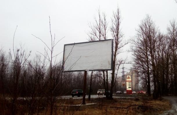 Незаконные щиты вновь «выросли» на Советском проспекте