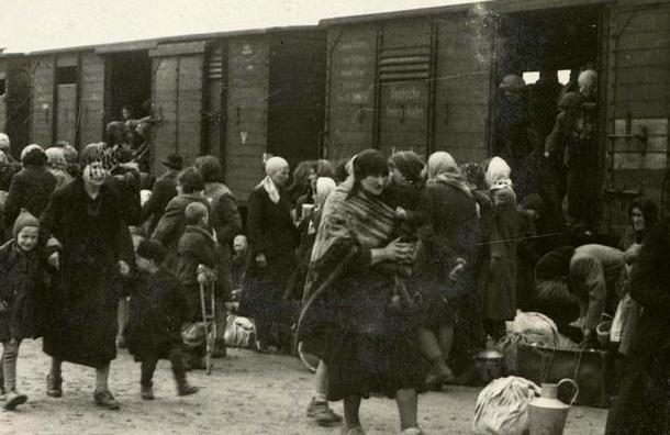 Депортации у стен Ленинграда