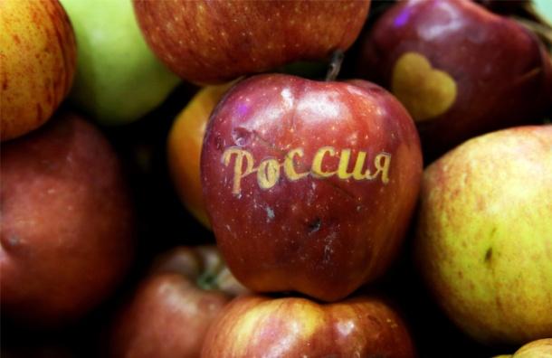 ВПольше сообщили онаращивании вобход санкций экспорта яблок вРФ