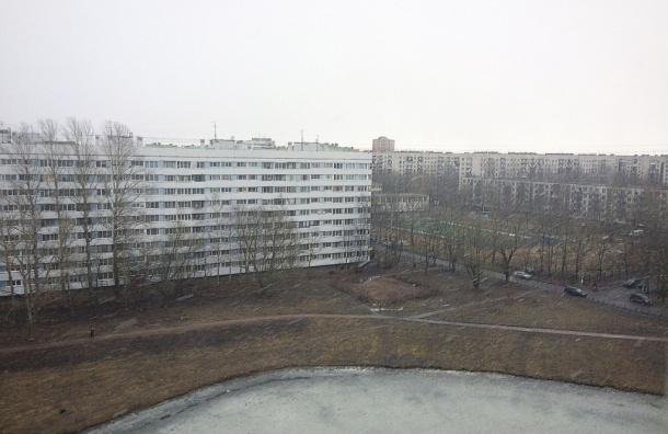 Юго-Запад Петербурга накрыло метелью