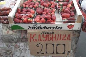 Запрещенные томаты и шампиньоны сожгли в Петербурге
