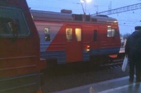 Очевидцы: остановилось движение электричек от «Ржевки» до Финляндского вокзала