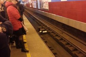 Поезда следуют с увеличенным интервалом на синей линии метро