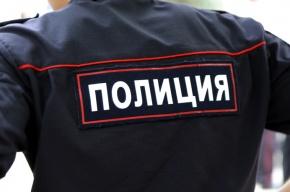 Коллекторы в Петербурге, заливая пеной двери квартир, ошиблись адресом