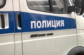 Грабители с битами ограбили ювелирный магазин в Пушкине