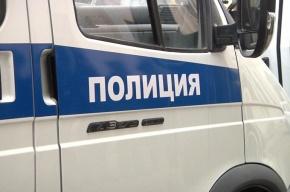 Машину сотрудницы Смольного сожгли в Купчино