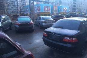 Госномера пропали с десятков машин на Комендантском проспекте