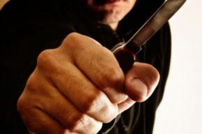 Разбойники с ножом ограбили шестиклассниц в школе на Энтузиастов