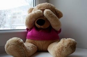 Пассажир BMW X5 похитил медведя с АЗС на Парашютной улице