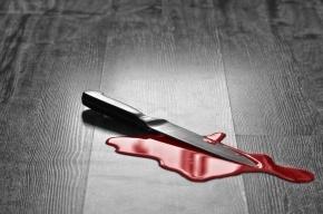 Подростки в Петербурге устроили драку на ножах в школе
